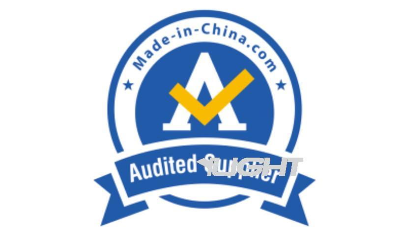 MIC Audit